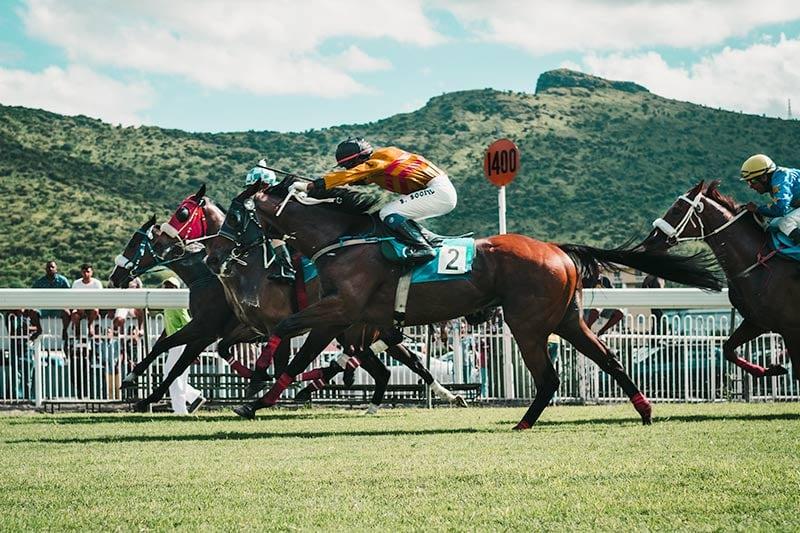 Horse_Race.jpg