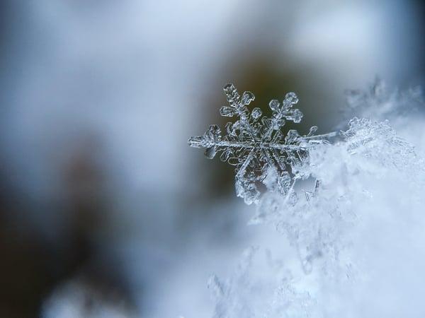 winter-holidays-canada-us-2020